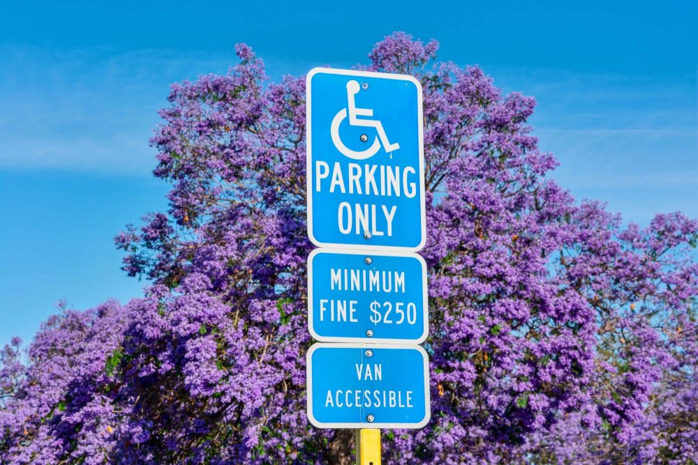 Handicap parking sign against a blue sky with a purple flowered tree framing it