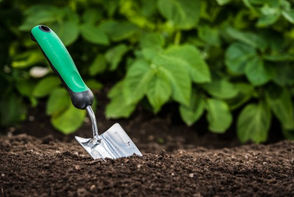 6 Gardening Tools For Wheelchair Users