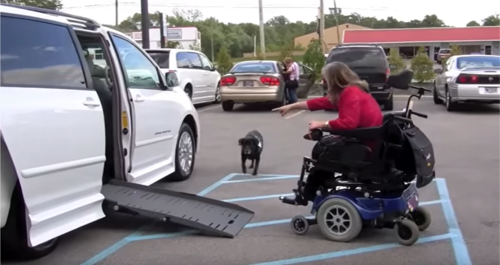 Barbara Reed motions for her service dog to enter an accessible vehicle